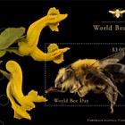 (New York) - World Bee Day - M/S CTO