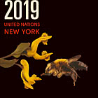 Annual Collection Folder 2019 - (New York)