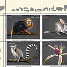 (Ginevra) Endangered Species 2021