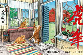 Chat Tigre