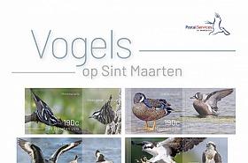 St Maarten - Uccelli