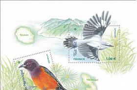 Fauna Flora - Island Birds