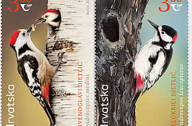 Croatia – Kyrgyzstan Joint Issue - Protected Bird Species
