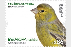 Madeira - Europa 2019