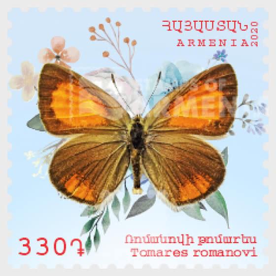 Flora and Fauna of Armenia (330) - Tomares romanovi - Set