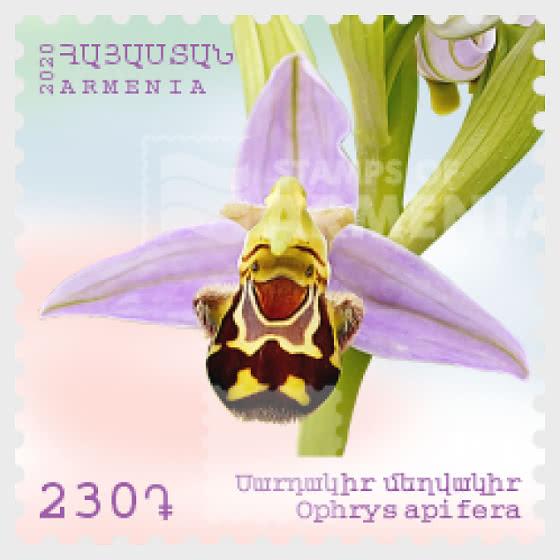 Flora and Fauna of Armenia( 230) - Ophrys apifera - Set