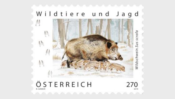 Wild Boar - Set
