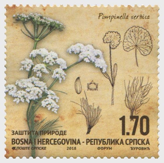 Protection of Nature - Pimpinella serbica - Set