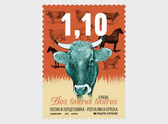 Domestic Animals - Cow - Set