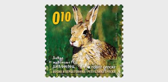 Wild Animals - Wild Rabbit - Set