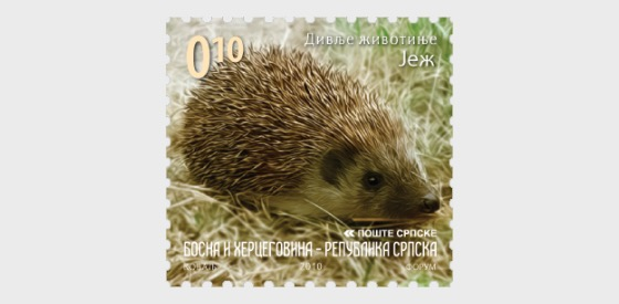 Wild Animals 2010 - Hedgehog - Set
