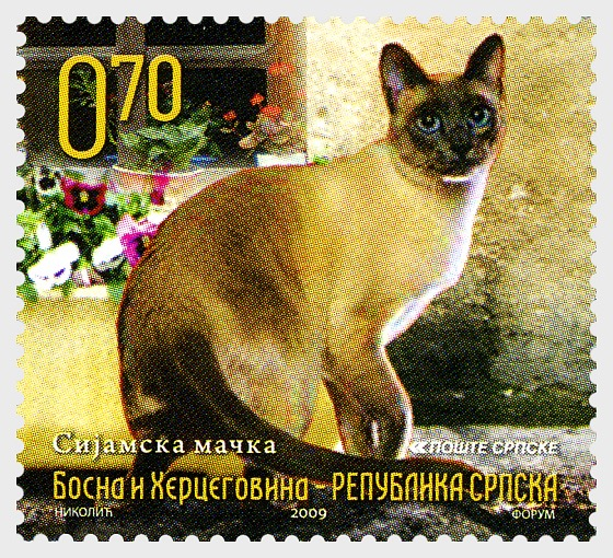 Fauna 2009 - Cats - Siamese Cat - Set