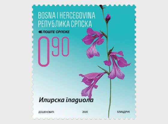 Flora -Illyrian Gladiolus - Set