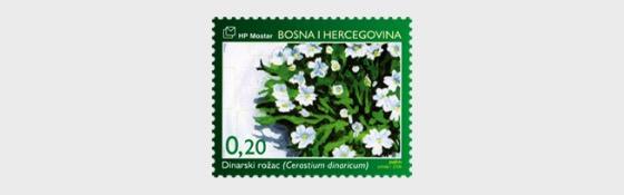 Flora 2006 - Dinaric Chickweed - Set
