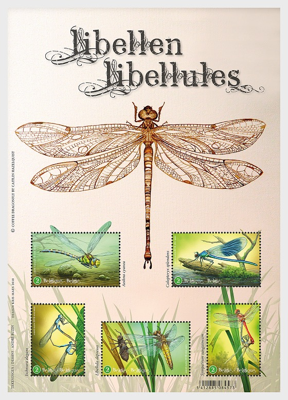 Dragonflies - Miniature Sheet