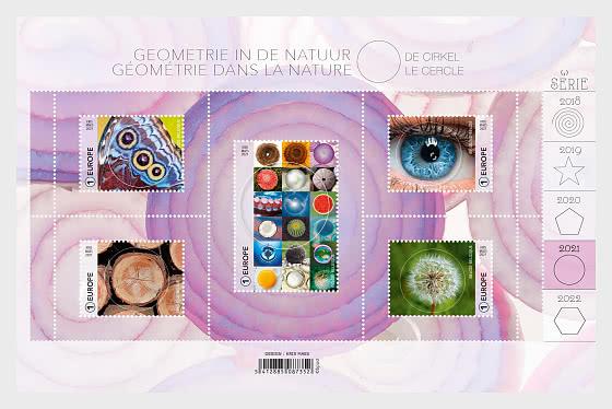 Geometría En La Naturaleza: El Círculo - Hojas Bloque