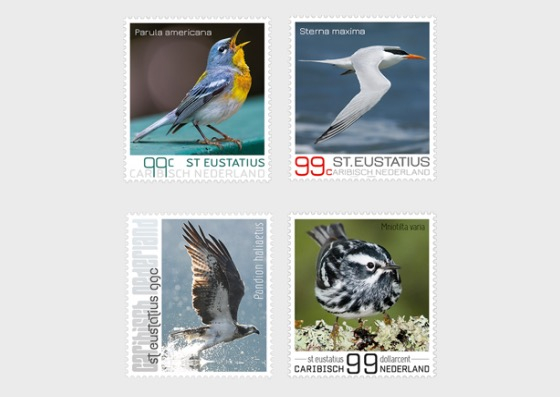Birds of St. Eustatius - Set