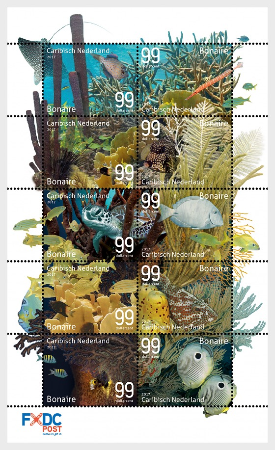 Underwater World of Bonaire - Sheetlets