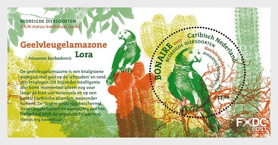 Endangered Species - Birds on Bonaire - Sheetlets