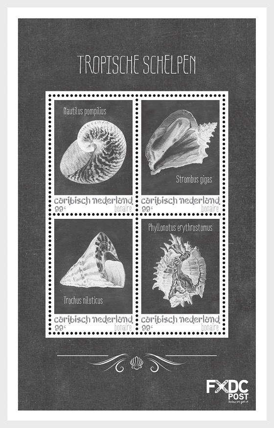 Shells Black/White - (Bonaire) - Miniature Sheet