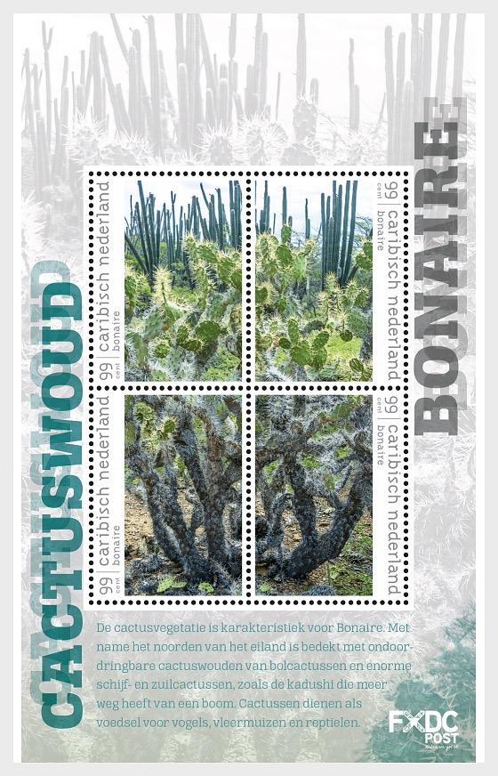 Forêt de Cactus - (Bonaire) - Blocs feuillets