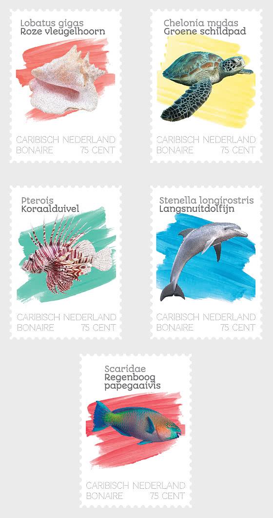 Sea Life (Bonaire) - Set
