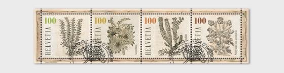 Medicinal Plants - (M/S CTO) - Miniature Sheet CTO