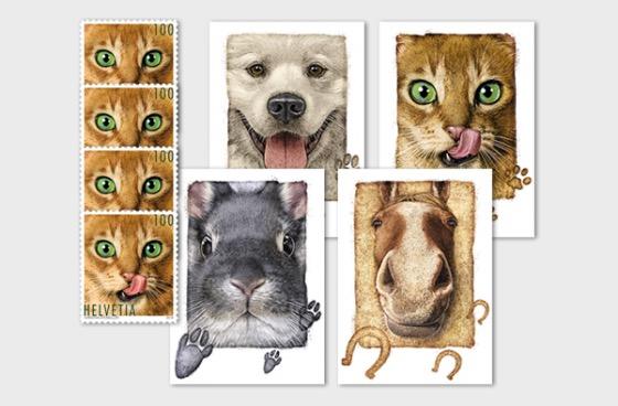 Animal Friends - Postcard
