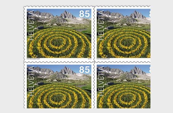 Land Art - Buttercup Rings, Ticino - Sheetlet Mint - Sheetlets
