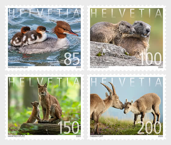 Animal Families - Mint - Set