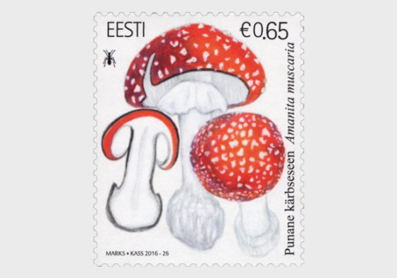 Estonian Mushrooms - Fly Agaric - Set
