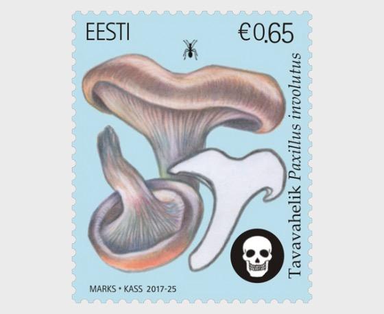 Estonian Mushrooms - The Brown Roll-Rim - Set