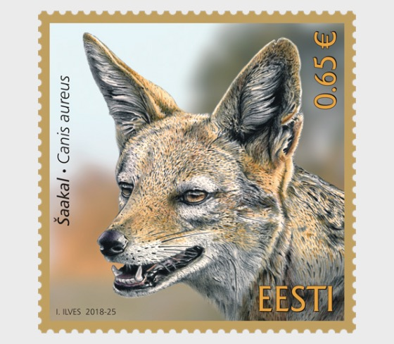 Estonian Fauna - Golden Jackal - Set