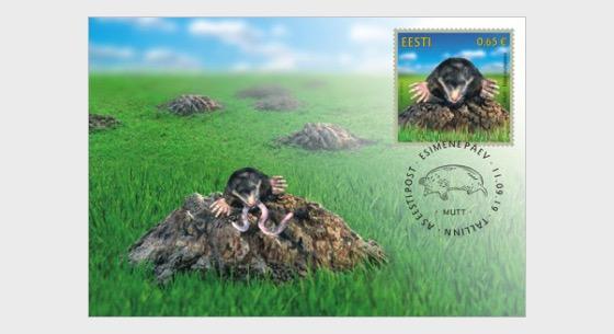 Fauna Estonia - El Topo - Maxi Cards