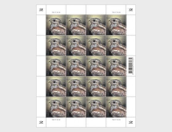 Bird of the Year - The European Nightjar - Full sheets