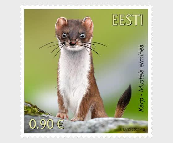 Estonian Fauna - The Stoat - Set