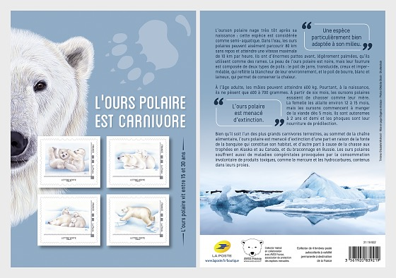Ours polaires - Collectable