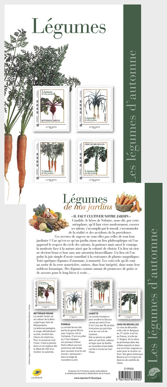 Autumn Vegetables - Collectibles