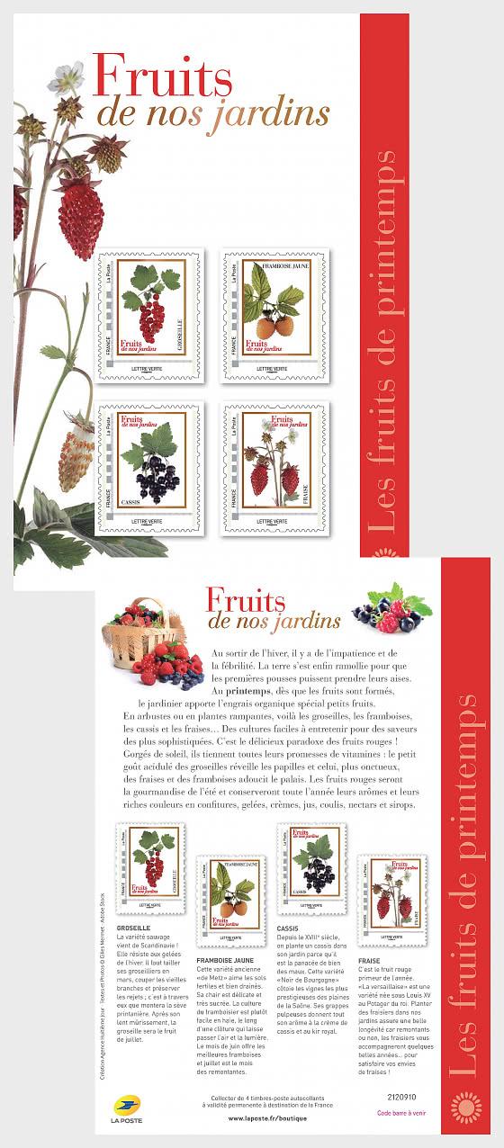 Spring Fruits - Collectibles