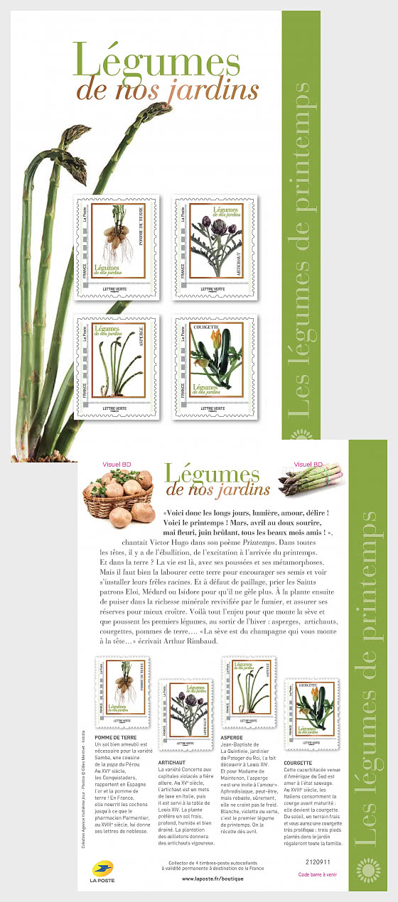Spring Vegetables - Collectibles