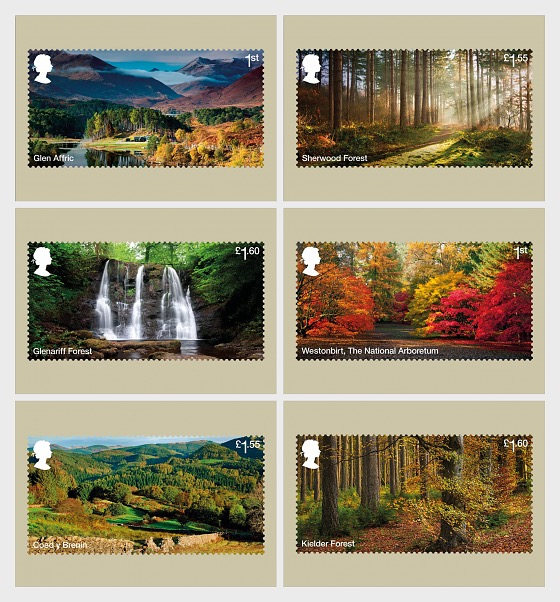 Forests - Postcard