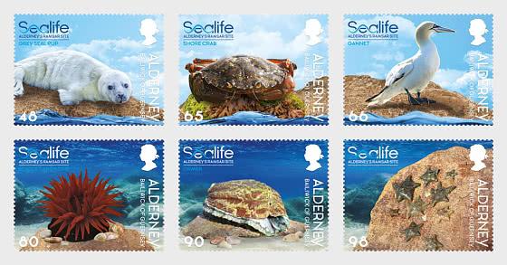 Sealife in the Ramsar Area - Set