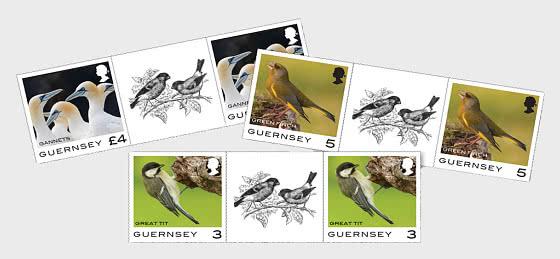 Definitivo di Guernsey - Uccelli - Serie coppie con interspazio