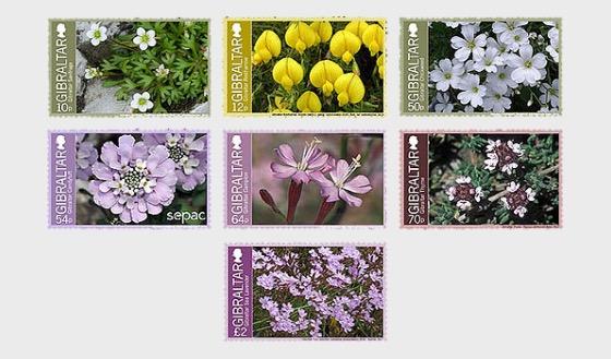 Gibraltar Endemic Flowers - Mint - Set