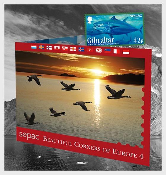 New Sepac 2013 Special Folder - Special Folder