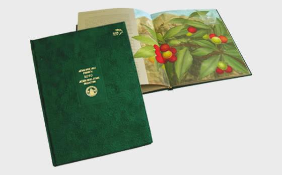 Annual Luxury Album 'Mount Athos 2010' - Prodotti annuali