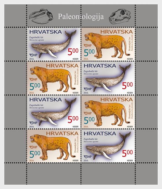 Paleontology - Sheetlets