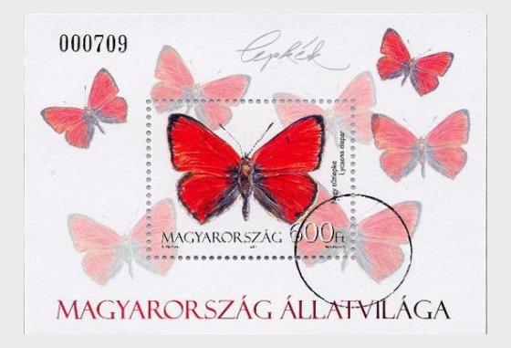 Fauna di Ungheria- Falene e Farfalle  - Foglietti