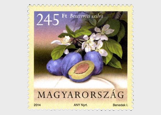 Cultivated Flora of Hungary - Fruit - Set
