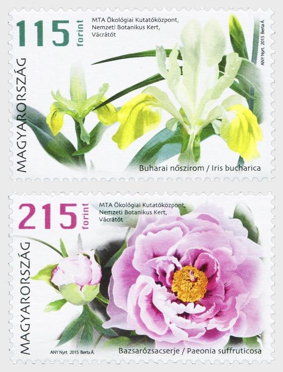 Flowers - Set